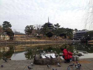 sarusawa0129_convert_20170129111915.jpg