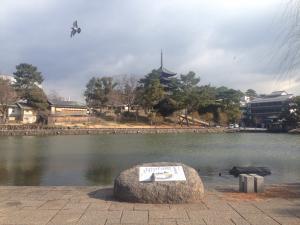 sarusawa0206_convert_20170206112418.jpg