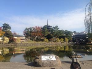sarusawa1113_convert_20161113120239.jpg