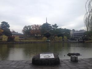 sarusawa1114_convert_20161114113030.jpg