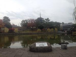 sarusawa1121_convert_20161121115810.jpg