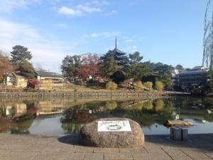 sarusawa1204_convert_20161204111018.jpg