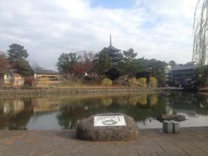 sarusawa1209_convert_20161209111813.jpg