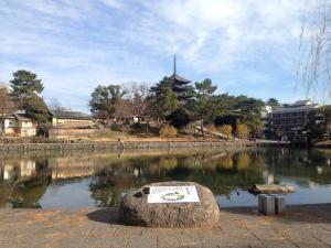sarusawa1229_convert_20161229130152.jpg