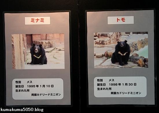 円山動物園_11