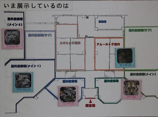 円山動物園_13