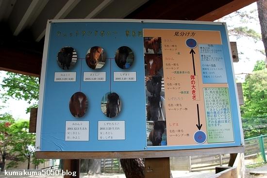 円山動物園_23