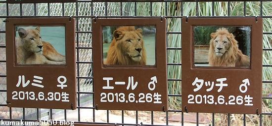 姫路セントラルパーク_53