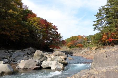 渓流の紅葉ですな
