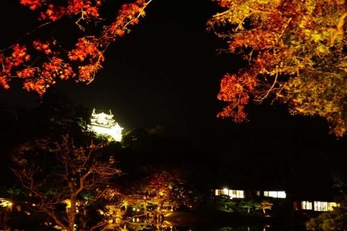 hikone32.jpg