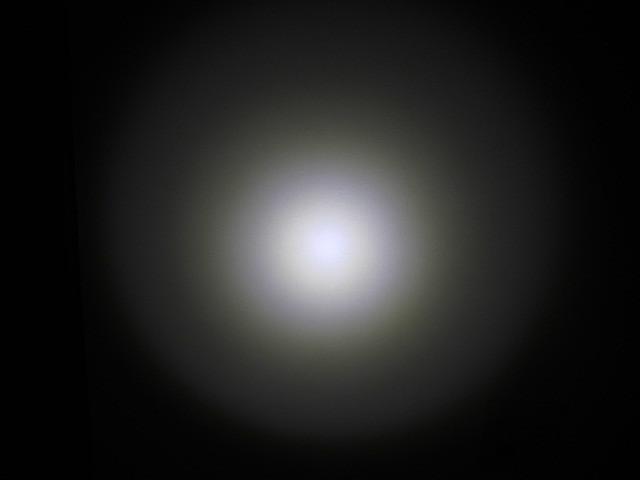 IMG_7265.jpg