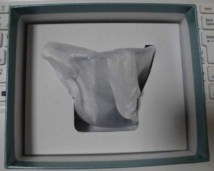 akenketu0212-2.jpg