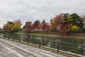 富山のお堀と紅葉