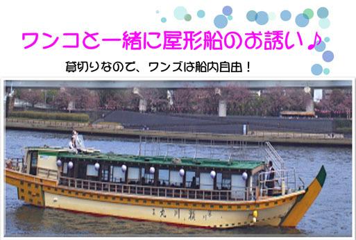201611262.jpg
