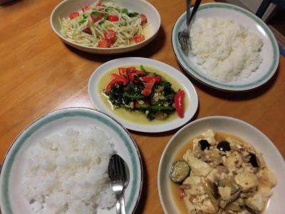 ナスと豆腐の炒め物他