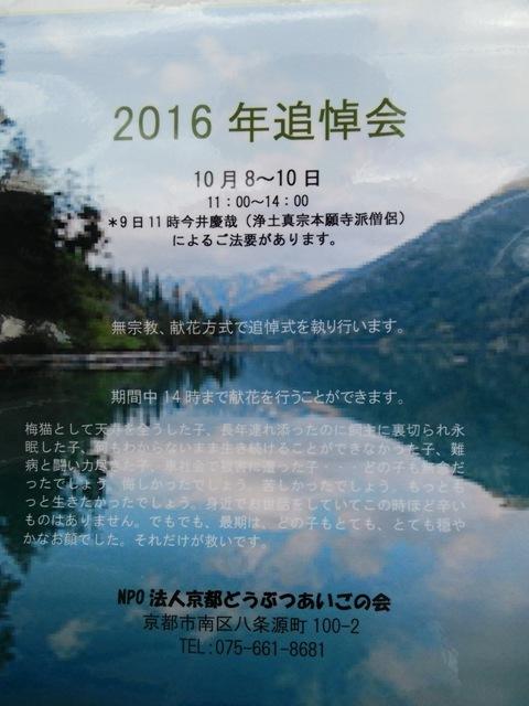 20161006_045.jpg