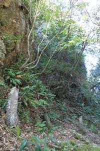 magusiyama (6)