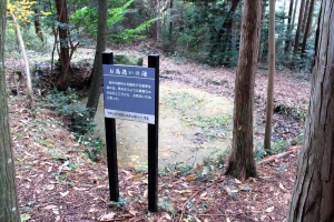 oumisakura (7)