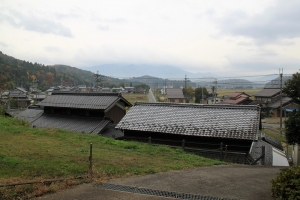 oumisakura (13)