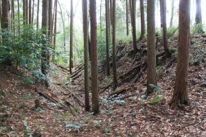 igamaruyama (6)