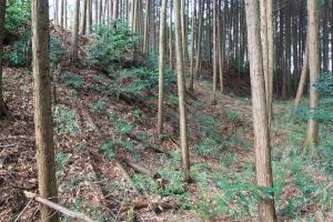igamaruyama (8)