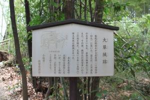 komakiookusa (7)