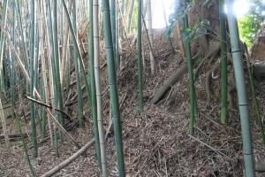 kamizue (4)