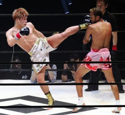 knockout2.jpg