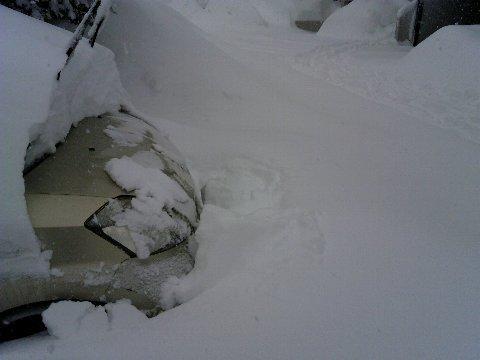 2年前の豪雪