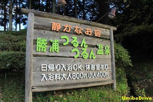 201612035.jpg