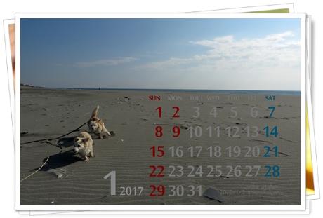 201701 初春うみべ散歩