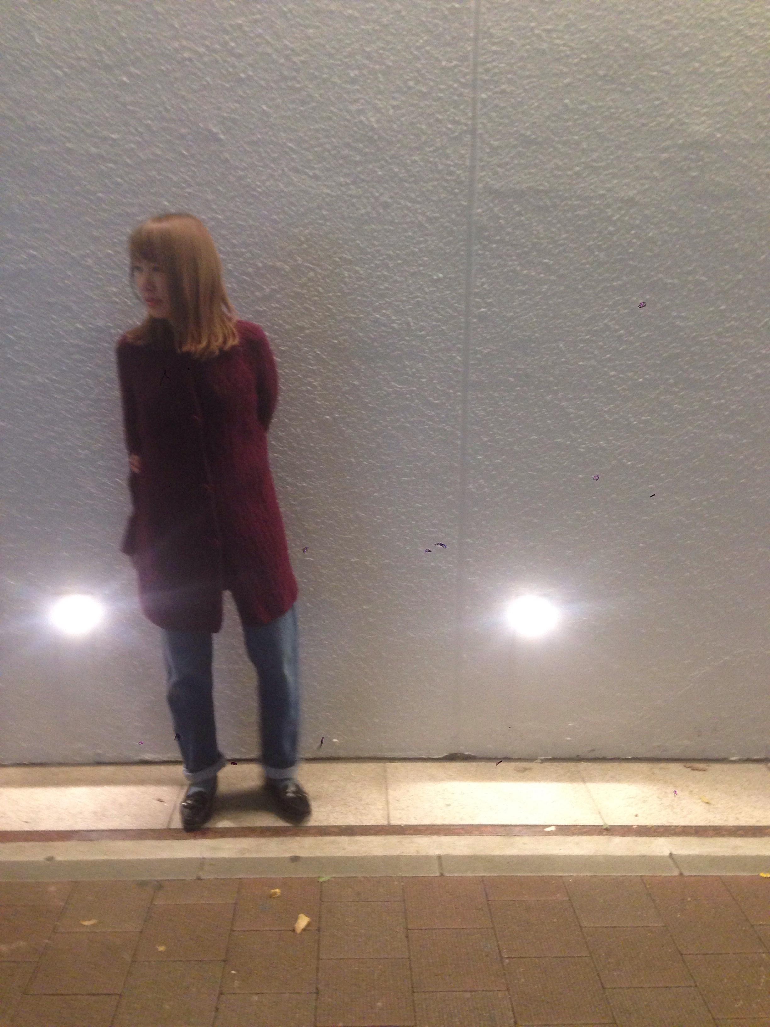 fc2blog_20161029185532b80.jpg