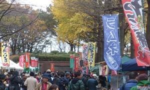 11.23(水祝)写真