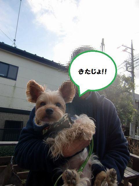 CIMG6887.jpg