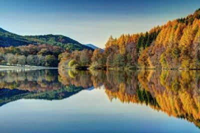 autumn2a.jpg