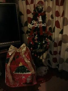 2016クリスマスツリーの下のプレゼント