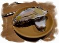 北海道産殻付きかき(でかし)