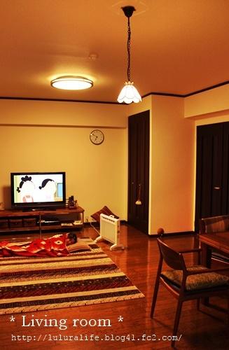 2017 living room