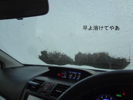 DSC06280sd.jpg
