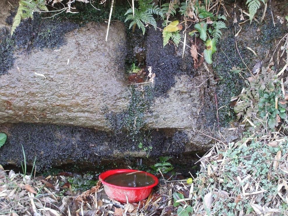 神秘な水源1 (2)