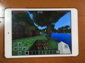 やっぱりマインクラフト♪ 「Apple TV Edition」 と 「Pocket Edition」間でマルチプレイはできるのか?