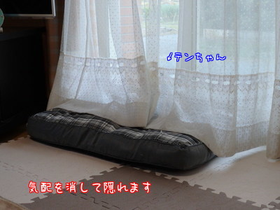 qcbXl83g3mPFnAG1480411618_1480411735.jpg