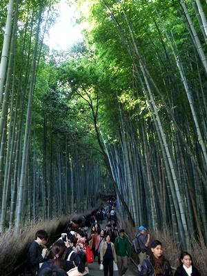 嵐山竹林の小径1612