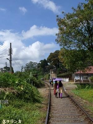 スリランカ鉄道1612
