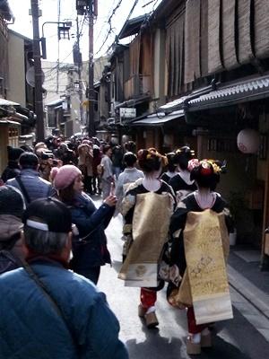 宮川町芸舞妓1701