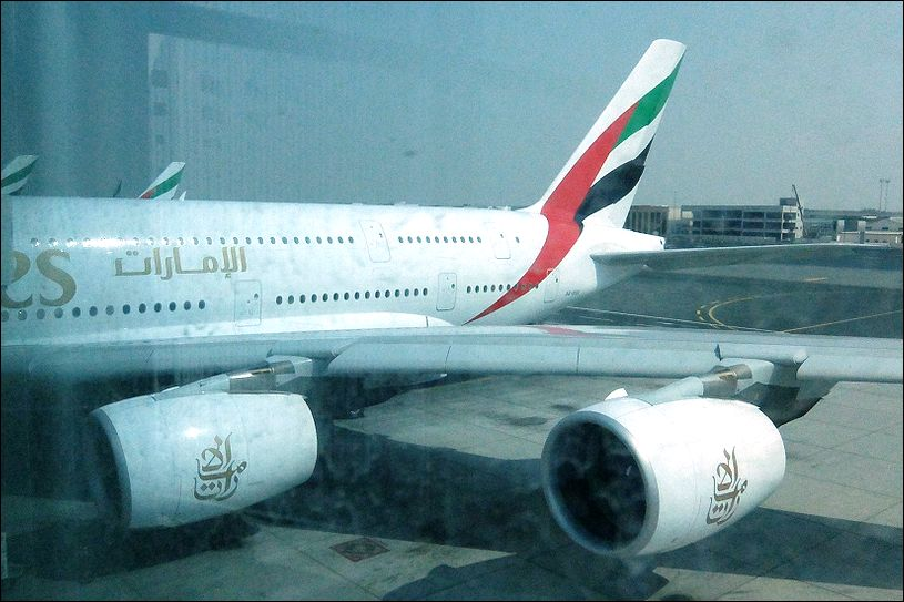 A3802.jpg