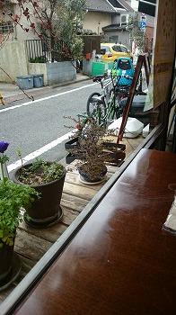 nishiogi-komenoko2.jpg