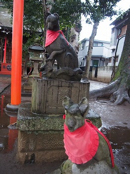 nishiogi-street51.jpg