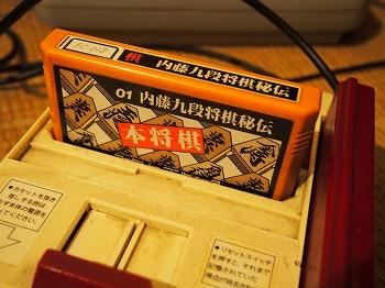 nishiogi-zarigani-kichi18.jpg