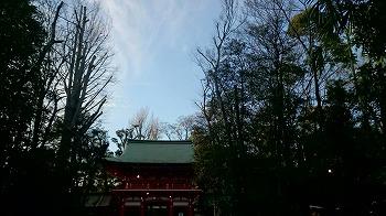 ogikubo-street91.jpg